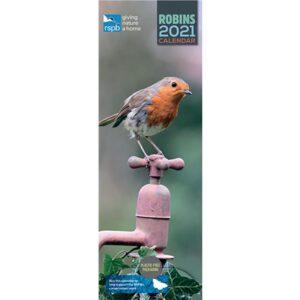 Otter House RSPB Robins Slim Calendar 2021