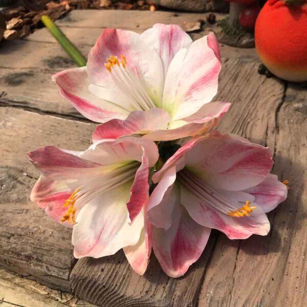 Pink Amaryllis Stem (77cm)