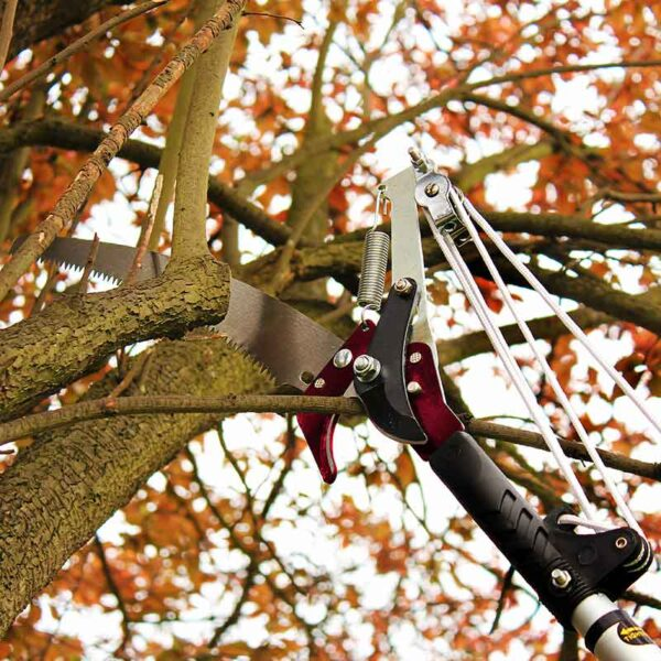 Prune or saw with the Kent & Stowe Telescopic Tree Lopper