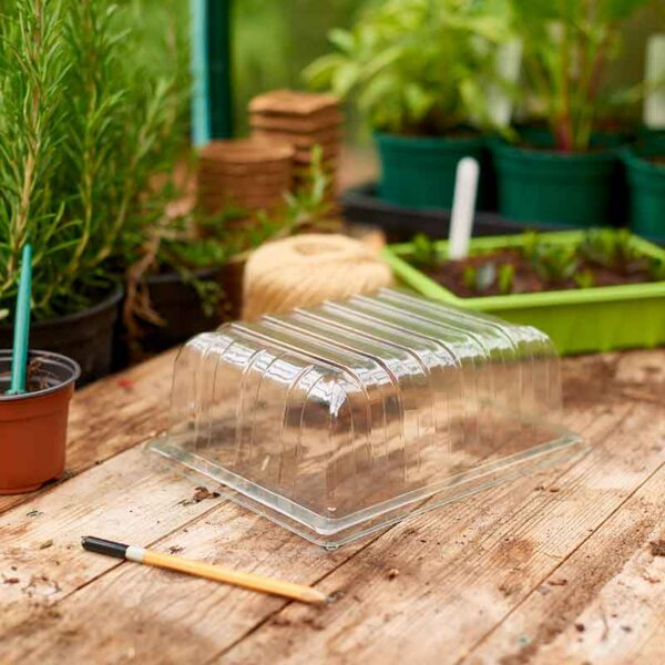 Ready to use Half Seed Tray Lid