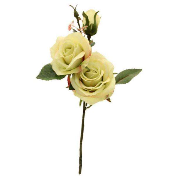 Green roses trio
