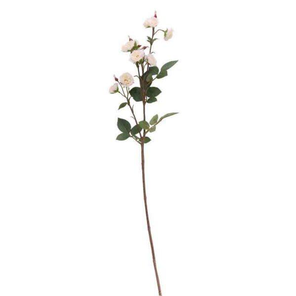 White Wild Rose Spray Stem (73cm)