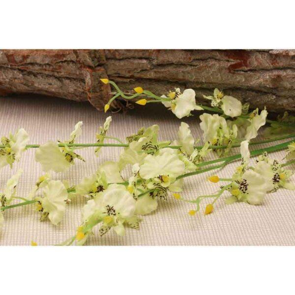 Green & Cream Dancing Orchid Stem (88cm)