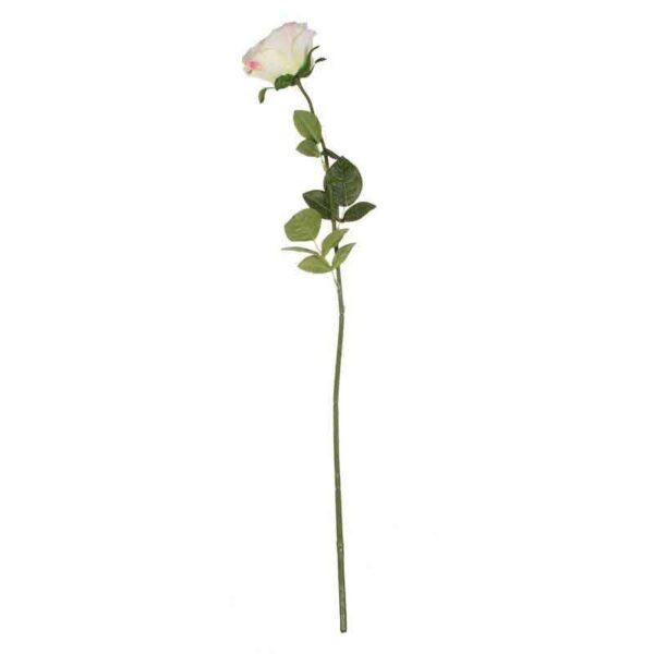 Small Pink & Cream Camelot Open Rose Stem