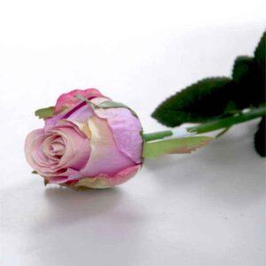 Oxford Lavender Rose Bud Stem (44cm)