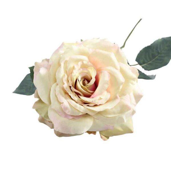 Single Cream & Blush Aidde Rose Stem (72cm)