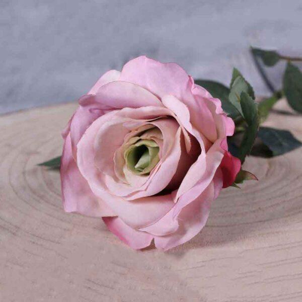 pink rose stem