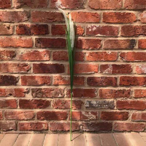 Cat Tail Wild Grass Stem (94cm)