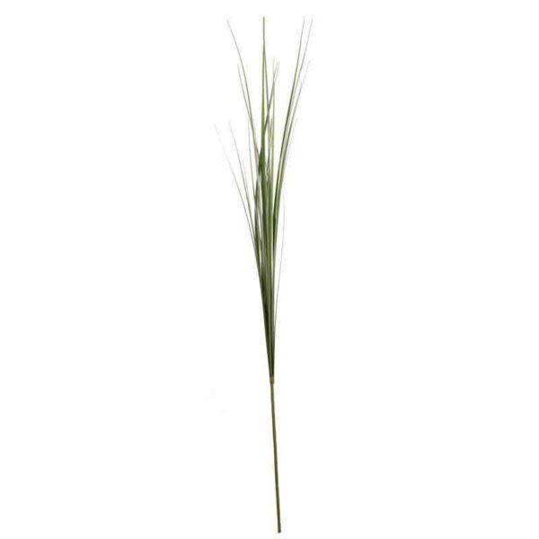 Green Onion Grass Stem (105cm)