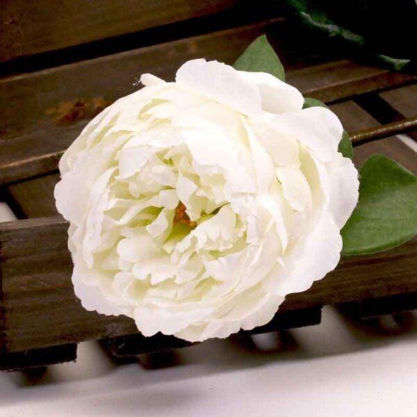 Single Cream Peony Stem (68cm)