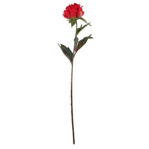 Single Red Peony Stem (68cm)