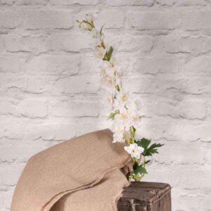 Bishops Cream Flower Spray Stem (76cm)