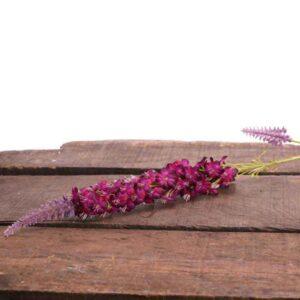 Lavender Veronica Spray Stem (74cm)