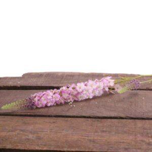 Pink Veronica Spray Stem (74cm)