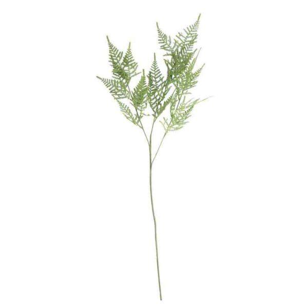 Asparagus Fern Spray Stem (74cm)