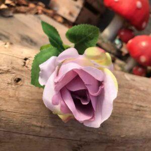Lavender rose bud stem