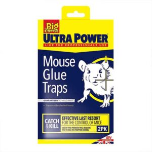 The Big Cheese Mouse Glue Traps
