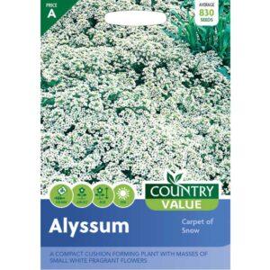 Country Value Alyssum Carpet Of Snow Seeds