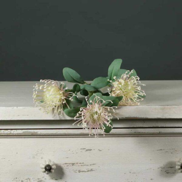 Light Pink Tintagel Leucospermum Stem (84cm)