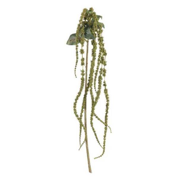 Green Amaranthus Stem (66cm)
