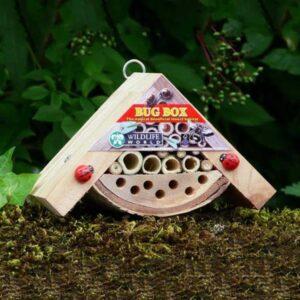 Wildlife World Minibugs Bobby's Bug Box