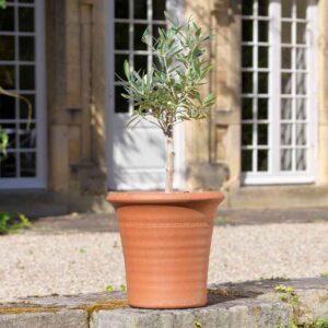 Small Yorkshire Flowerpots Ribbed Flowerpot
