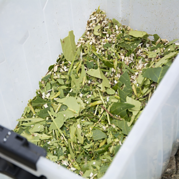 The Handy Electric Impact Shredder with Box & Detachable Hopper shreds foliage