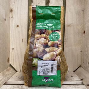 Taylors Pentland Crown Main Crop