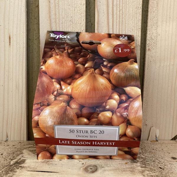 Taylors Stur BC 20 Onion Sets