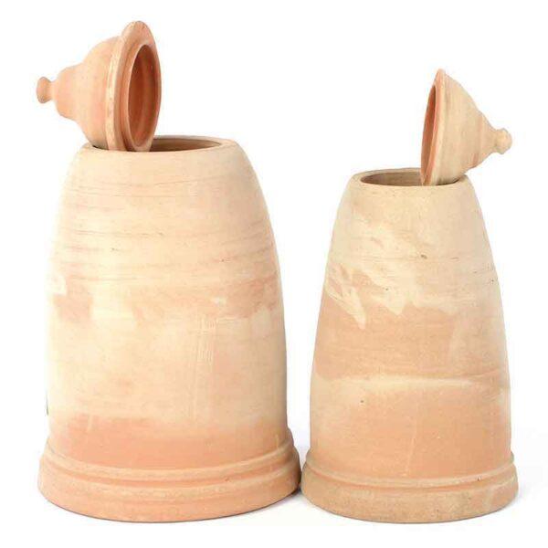 Terracotta Rhubarb Forcers in 2 sizes