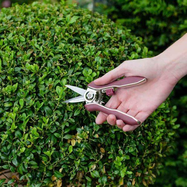 Using Kent & Stowe Garden Life Snips