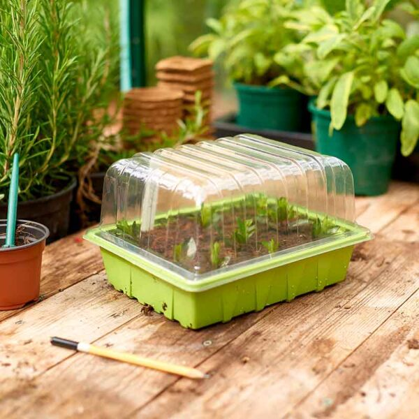 Using a Half Seed Tray Lid
