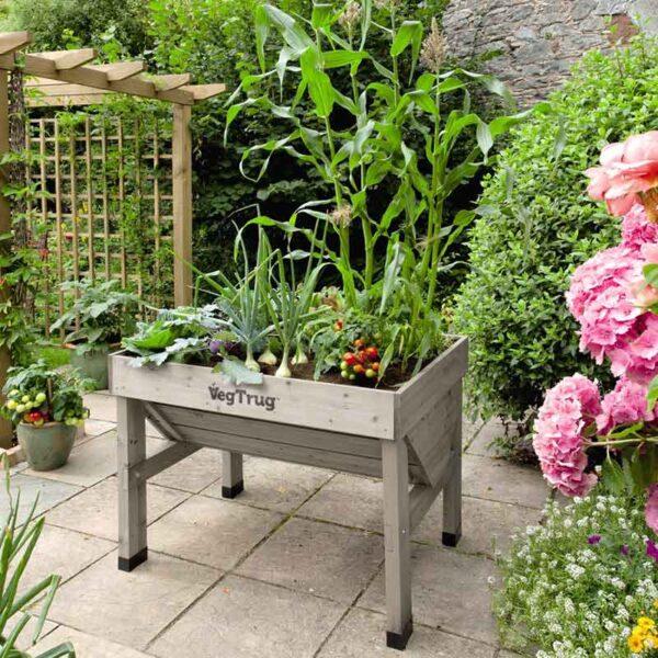 VegTrug Grey Wash (Small 1m) planted on patio
