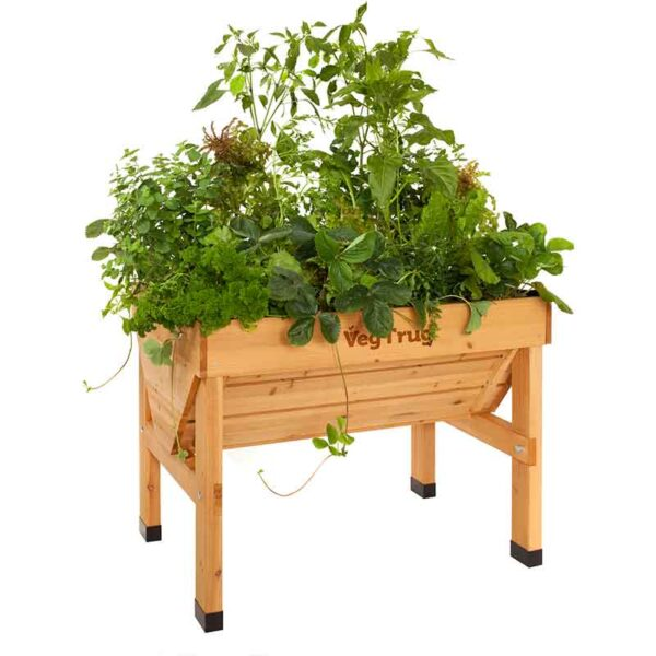 VegTrug Natural Wood (Small 1m) planted
