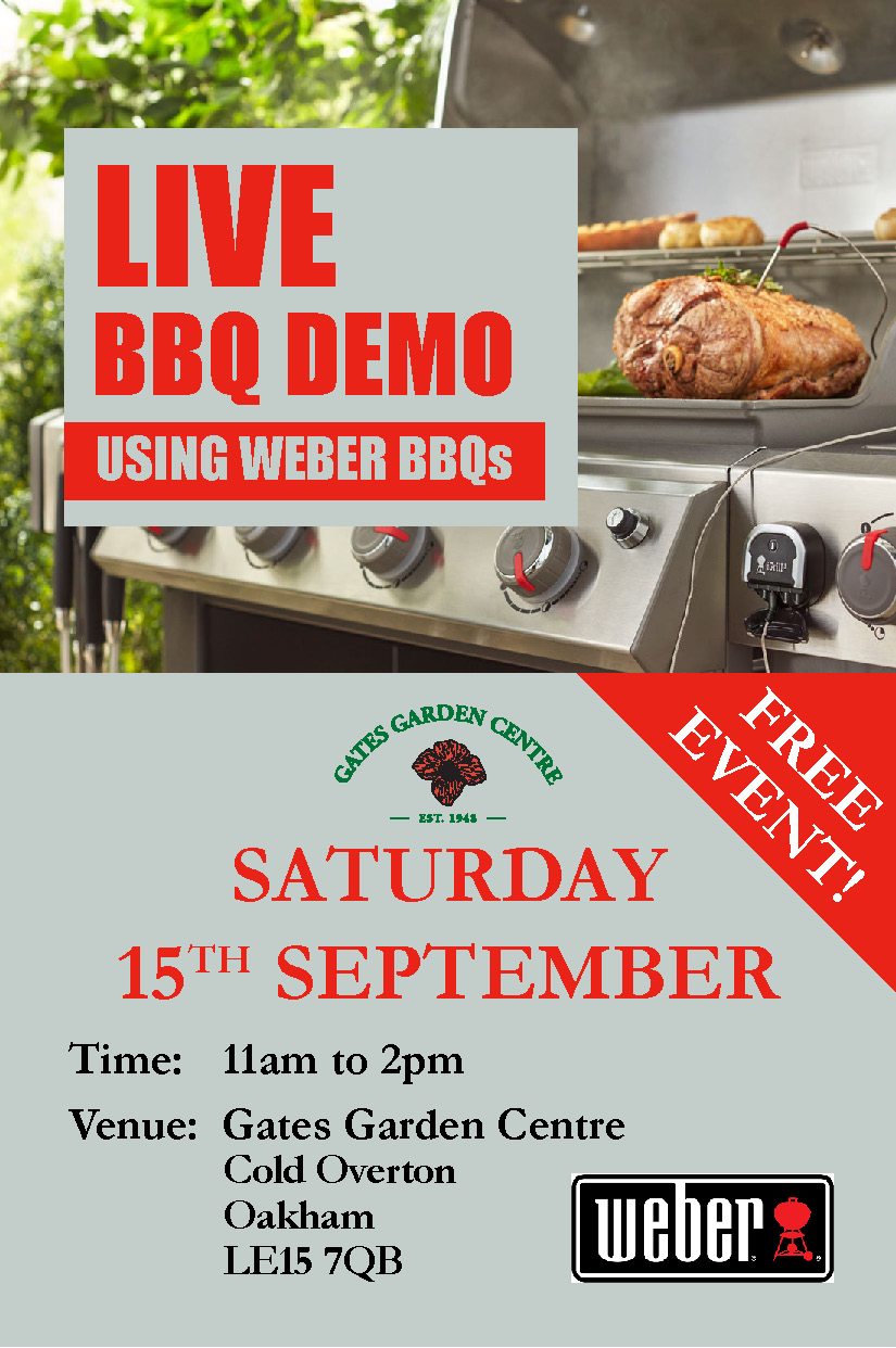 Weber BBQ Demo Day - Web Button_2