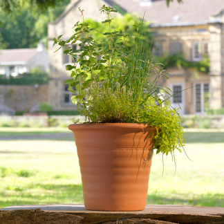 Yorkshire Flowerpots Ribbed Flowerpot (Medium)