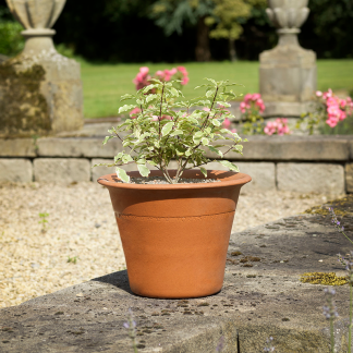 Yorkshire Flowerpots Harrogate Pot (Small)