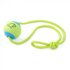 Zoon 6.5cm Pooch Tennis Ball on a Rope
