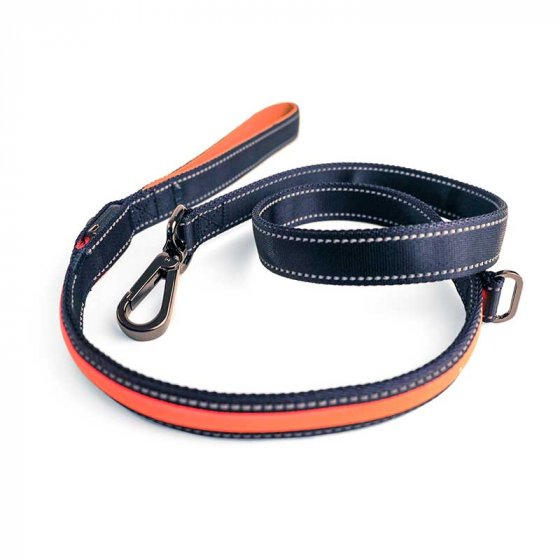 Zoon Flash & Go Rechargeable Night Dog Lead