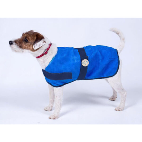 Zoon Uber-Activ Cooling Coat 30cm in use