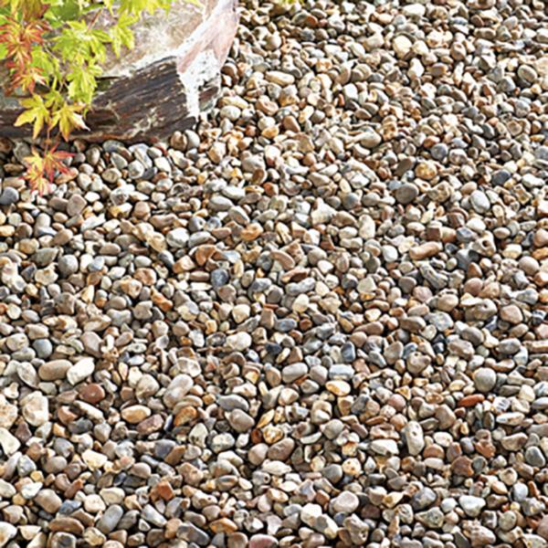 Dry Kelkay Oyster Pearl Pebbles