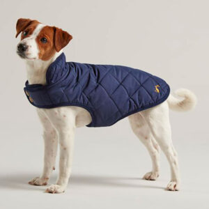Joules Newdale Navy Quilted Dog Coat