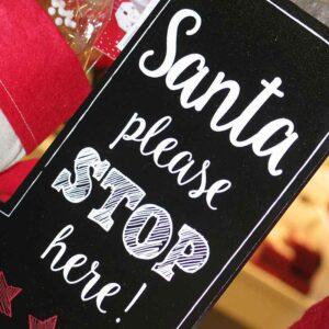Novelty Christmas Items