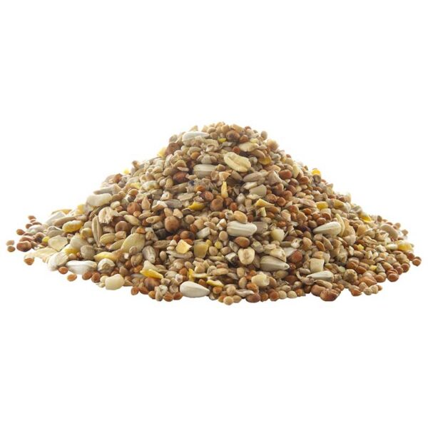 Peckish Complete Seed & Nut Mix 2kg + 50% Extra Free Close Up of Seed
