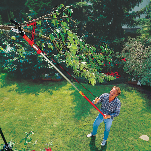 Reach further to prune trees with a telescopic handle