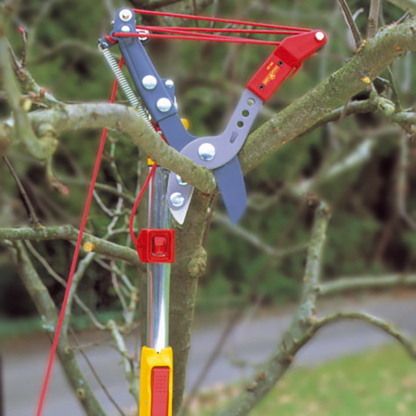 Using Wolf Garten multi-change Adjustable Anvil Tree Lopper (Cutting dia. 40mm)
