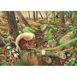 House Of Puzzles Save Our Squirrels 1000 Piece Jigsaw