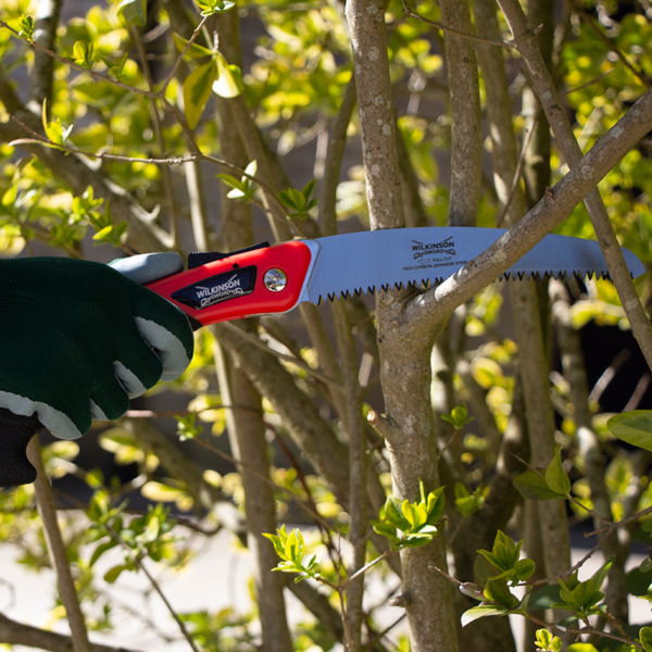 Using the Wilkinson Sword Turbo Folding Pruning Saw