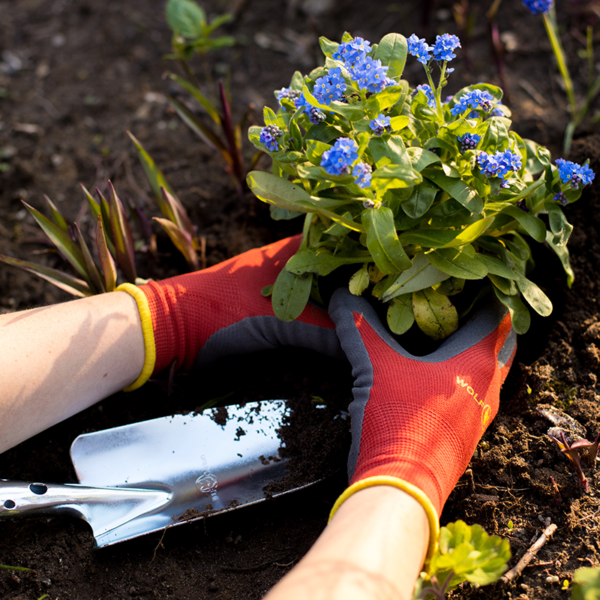 Planting with Wolf Garten Washable Soil Care Gloves