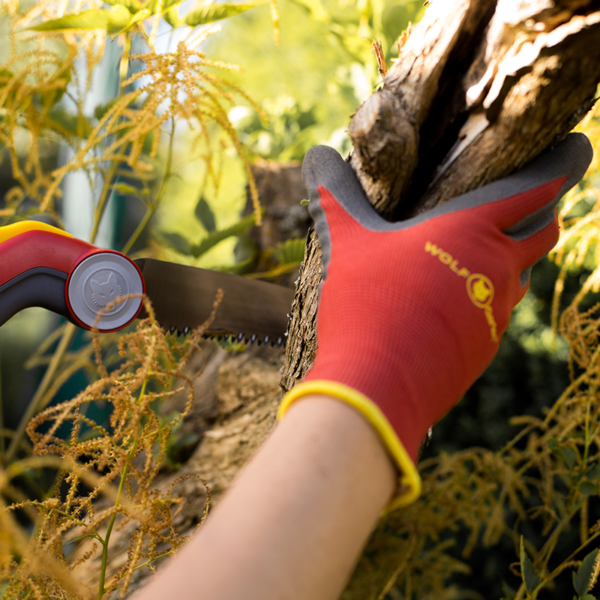 Protecting hands from sharp bark with Wolf Garten Washable Soil Care Gloves